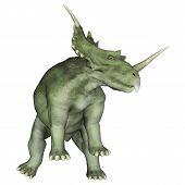 pic of herbivores  - 3D digital render of a dinosaur Styracosaurus or spiked lizard a genus of herbivorous ceratopsian dinosaur from the Cretaceous Period  - JPG