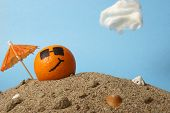 stock photo of florida-orange  - A cool orange chills at the beach in the Florida sunshine - JPG