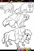 picture of wolverine  - Coloring Book or Page Cartoon Illustration of Black and White Wild Mammals Animals Characters for Children - JPG