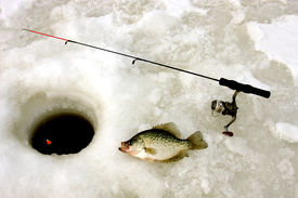 pic of crappie  - crappie pole and hole in the ice on a frozen lake - JPG