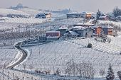 picture of hamlet  - Narrow rural road and small village  among vineyards covered with snow in Piedmont - JPG