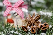 picture of christmas spices  - Christmas spices - JPG