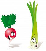 foto of green onion  - red radish and green onion  - JPG
