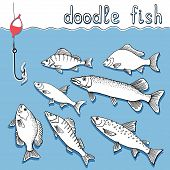 picture of steelhead  - Set of hand drawn doodle fish fishing - JPG