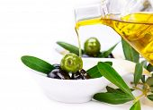 stock photo of olive trees  - Olive Oil - JPG