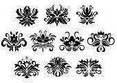 foto of tendril  - Retro floral and foliage design elements with abstract black flowers - JPG