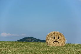 stock photo of emoticon  - Smiling straw bales with blue sky - JPG
