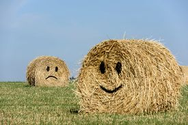 picture of emoticon  - Smiling straw bales with blue sky - JPG
