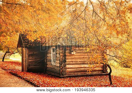 poster of Autumn landscape - small wooden house among the yellowed autumn trees with fallen autumn leaves on the ground. House in the autumn forest. Autumn landscape view. Rural autumn scene with yellowed autumn trees and house in the autumn forest