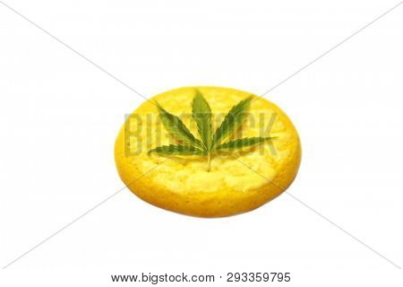 Marijuana Cannabis Cannabis Cookie Marijuana
