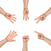 Five Male Hands Raise Up, In Fist, One Finger Pointing Up, Two Fingers Pointing Up, Three Fingers Po poster