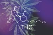 Thc Formula, Tetrahydrocannabinol . Medical Marijuana, Despancery Business. Cannabinoids And Health, poster