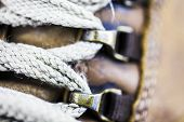 Closeup Of Shoe Laces On The Shoes. Macro Image Of Shoes And Laces. poster