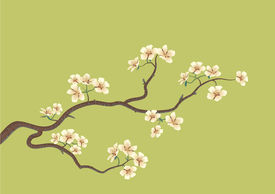 stock photo of cherry blossoms  - This is the illustration of a flowered sakura japanese cherry tree - JPG