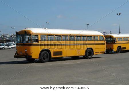 School Buses poster