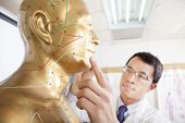 picture of eastern culture  - chinese medicine doctor teaching  Acupoint on Human acupuncture model - JPG