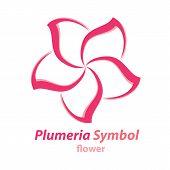 stock photo of plumeria flower  - Vector of Plumeria  - JPG