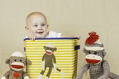 picture of sock-monkey  - An infant boy sitting in a sock monkey box smiling - JPG