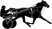 image of sulky  - trotter horse racing and sulky with driver - JPG