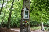 pic of polonia  - small shrine with Virgin Mary figure on tree in park in Gdansk Poland - JPG