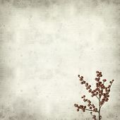 pic of winterberry  - textured old paper background with branches of winterberry - JPG