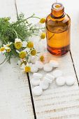 foto of chamomile  - Concept of homeopathy - JPG