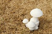picture of garden sculpture  - white mushroom sculpture is on dry turf - JPG