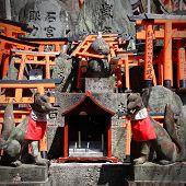 stock photo of inari  - Japan landmark  - JPG