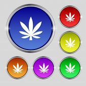 picture of cannabis  - Cannabis leaf icon sign - JPG