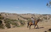 stock photo of horse-riders  - young horse instructor or cattleman riding the animal wearing cowboy hat and rider boots looking cool while taking a ride at countryside summer landscape - JPG