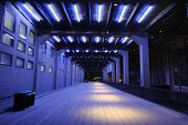 picture of new york night  - Tunnel On the High Line in New York City - JPG