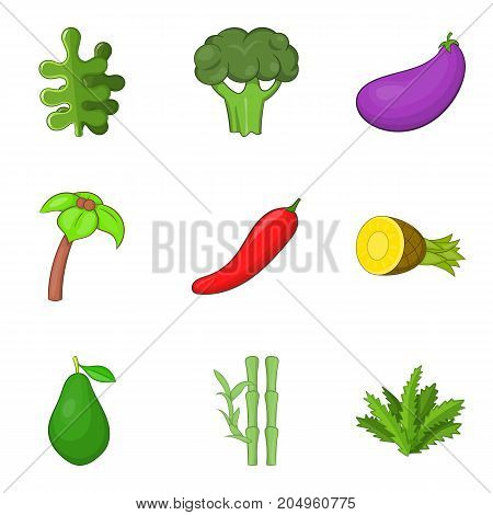 poster of Botany icons set. Cartoon set of 9 botany vector icons for web isolated on white background