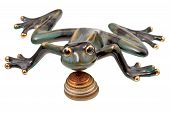 pic of obeah  - ceramic frog and coins isolated on white - JPG