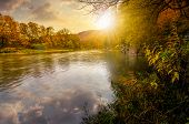 Forest River In Autumn Mountains At Sunset poster