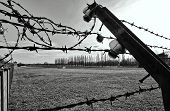 Wire Of a Concentration Camp