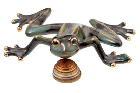 image of obeah  - ceramic frog and coins isolated on white - JPG