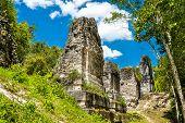 Ancient Mayan Ruins At Tikal. Unesco World Heritage In Guatemala poster