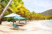 Idyllic tropical beach with white sand, palm trees and turquoise Caribbean sea water on Mayreau isla poster