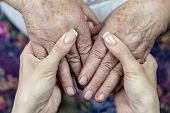Hands Of Old Grandmother In Young Hands Of Granddaughter poster