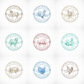 Organic Cattle And Poultry Farm Framed Retro Badges Or Logo Templates Set. Hand Drawn Domestic Anima poster