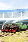 image of former yugoslavia  - steam locomotives in depot - JPG