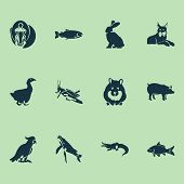 Fauna Icons Set With Carp, Goose, Salmon And Other Mantis Elements. Isolated  Illustration Fauna Ico poster