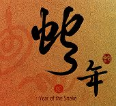 foto of chinese new year 2013  - Chinese Calligraphy 2013 for Year of Snake - JPG