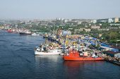 Port Vladivostok, Panorama Of Container Terminal, Russia