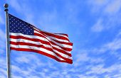 picture of american flags  - photo of an american flag - JPG