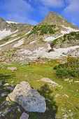 High Altitude Alpine Tundra In Colorado During Summer