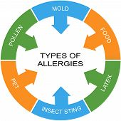 Types Of Allergies Word Circle Concept