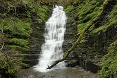 picture of low-necked  - Water-Break-Its-Neck waterfall Warren Woods Radnor Forest Wales Low speed with rushing water - JPG