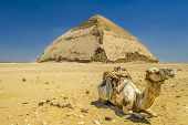 A row of camels transport tourists in front of all of the Dakshur Pyramids in Cairo, Egypt