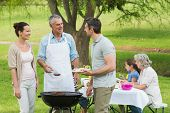 stock photo of extended family  - View of an extended family with barbecue in the park - JPG